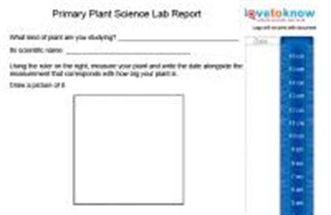 I need help writing a lab report
